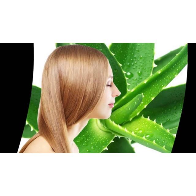 Алоэ Вера для быстрого восстановления волос