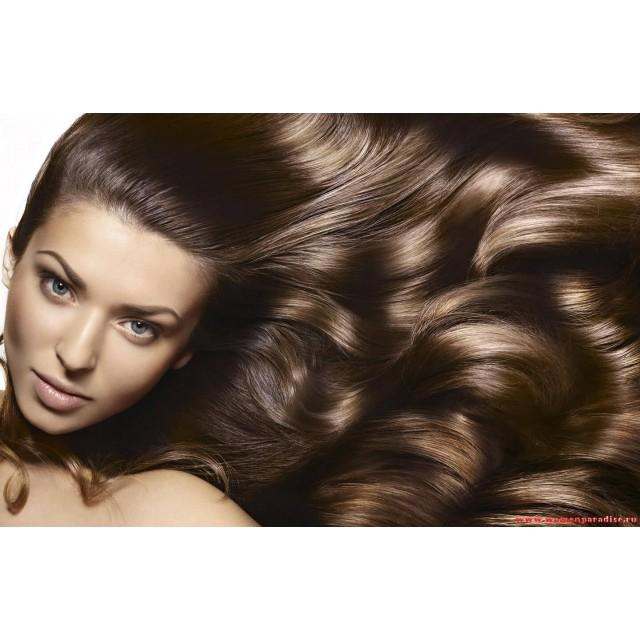 Правильный уход за волосами – средства Ellips